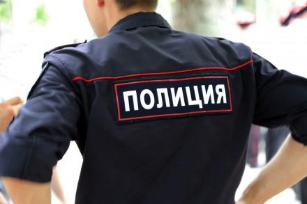 В ряды полицейских прибыло.
