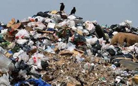 Незаконная свалка мусора на Уташе.