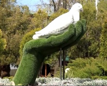 «Белый голубь» поселился на Театральной площади.
