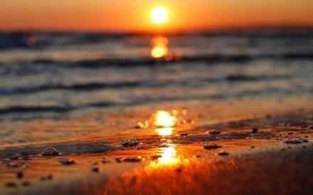 Тело Центрального пляжа – экологическая проблема.