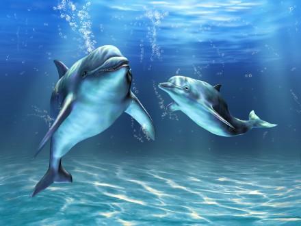 Дельфины в деревне.