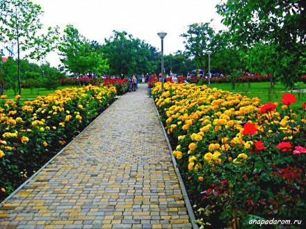 Большая работа будет проведена в парке «Ореховая роща».