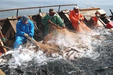 Поймали «рыбку на крючок»