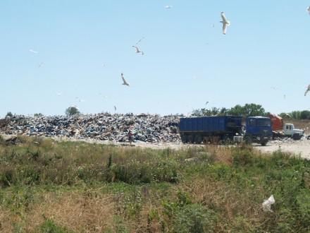 Твёрдые бытовые отходы - с ними нужно что-то делать